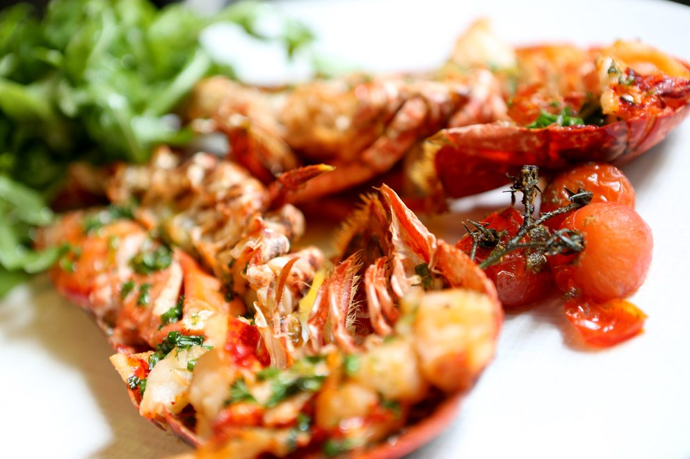Adamson9_lobster